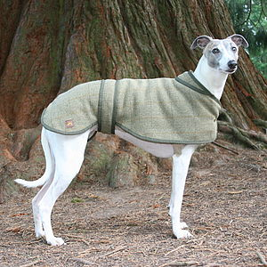Tweed Whippet Dog Coat - dogs