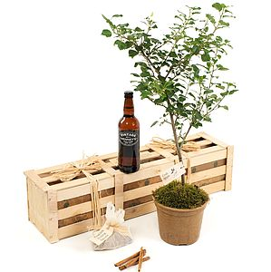 Cider Lover's Gift Crate - flowers & plants