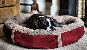 Wraparound Fleece Dog Bed Large - beds & sleeping