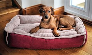 Cradle Fleece Dog Bed - dogs