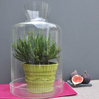 Terrarium Dome Planter