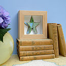 Handmade Star Book Picture