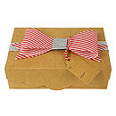 Cupcake Treat/Gift Box X2