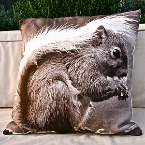 Winter Squirrel Cushion - patterned cushions