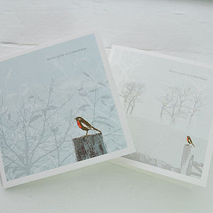 Bird Garden Christmas Cards - christmas card packs