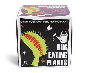 Sow And Grow Bug Eating Plant - gifts under £25 for him