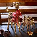 Grey Willow Light Up Reindeer Decoration