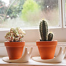 Sweet Home Snail Plant Pot And Saucer Small