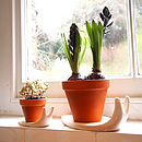 Sweet Home Snail Plant Pot And Saucer Large