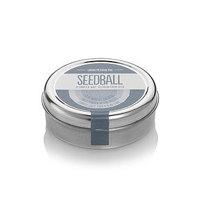 Wildflower Seedballs In A Tin