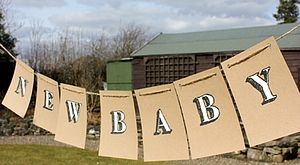 'New Baby' Handpainted Bunting - bunting & garlands