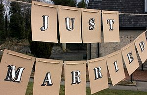 'Just Married' Handpainted Bunting - bunting & garlands