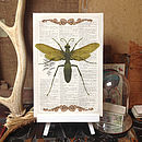 Upcycled Antique Paper Insect Bug Print