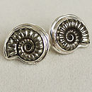 Promicroceras Ammonite Sterling Silver Studs