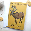 Reindeer Greetings Card