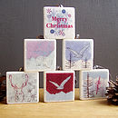 Arctic Christmas Decorations Set Of Six