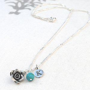 Personalised Silver Birthstone Necklace - necklaces