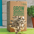 Grow Your Own Mushrooms Kit