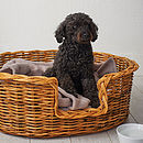 Oval Rattan Pet Basket For Cats Or Dogs