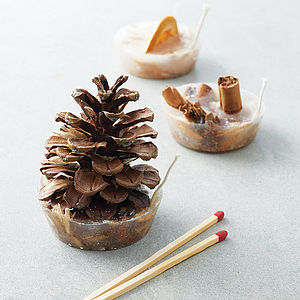 Eight Festive Scented Fire Lighters - home accessories