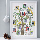 Family Tree Photograph Print
