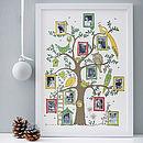 Family Tree Photograph Print
