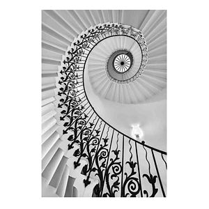 'The Queen's House Tulip Staircase' Fine Art Print - architecture & buildings