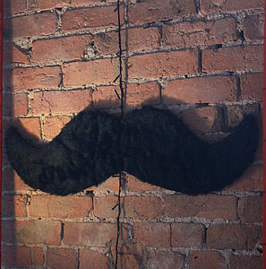 Moustache Wall Decoration Faux Fur Large