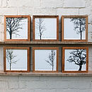 Winter Tree Reclaimed Wood Prints