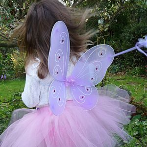 Fairy Wings And Wand - fancy dress