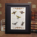 Upcycled Antique Paper Insects Art Print