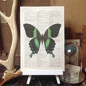 Peacock Butterfly Antique Book Page Print - contemporary art