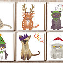 Full Set Of Cat In Hat Cards