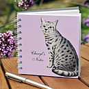 Cat Notebook