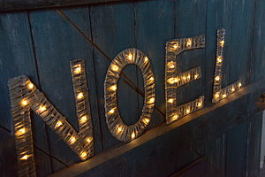 Willow Letters With Lights - christmas lights
