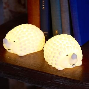 Woodland Hedgehog Night Light - children's room accessories