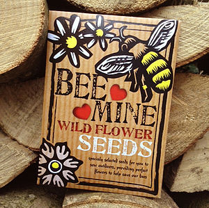'Bee-Mine' Bee Friendly Wild Flower Seeds - valentine's cards