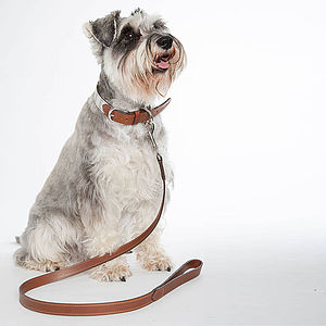 Full Leather Lead - dogs