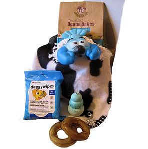 Boy Puppy Hamper For Dogs