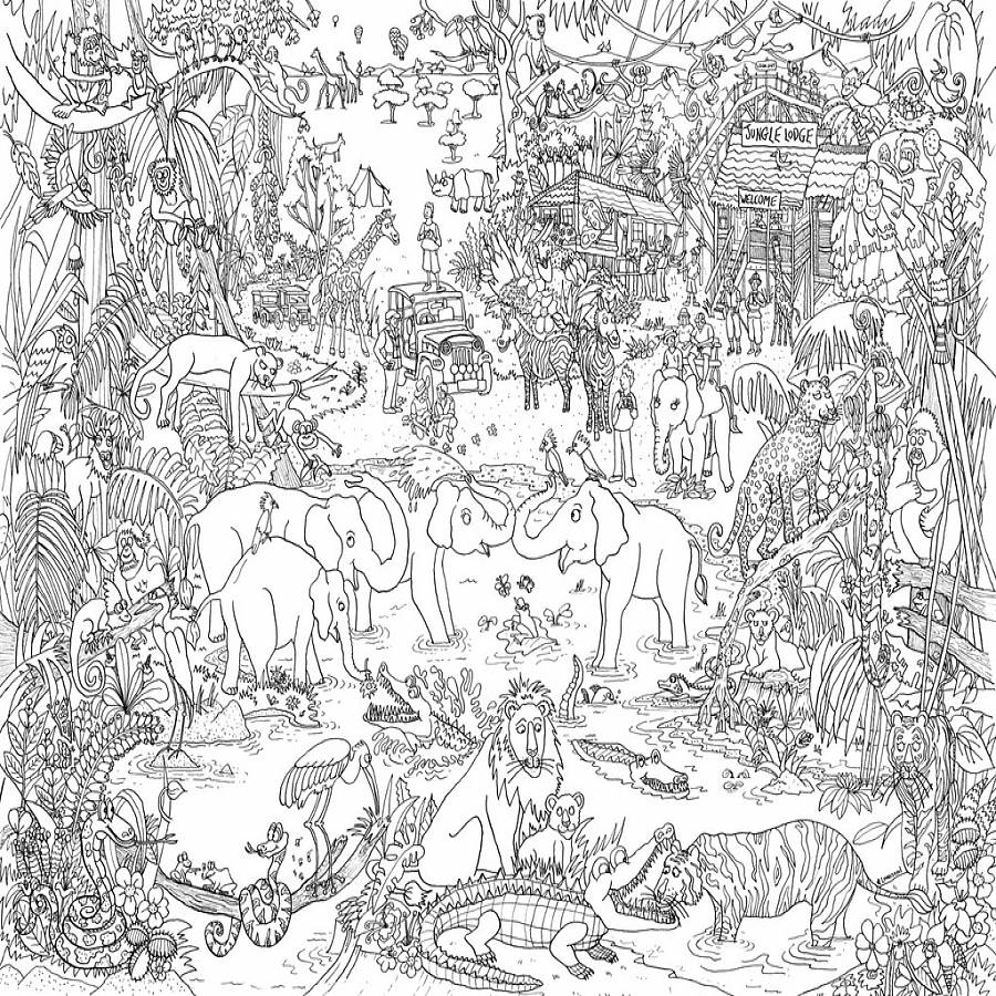 Jungle safari colouring in poster by really giant posters Giant coloring books for adults