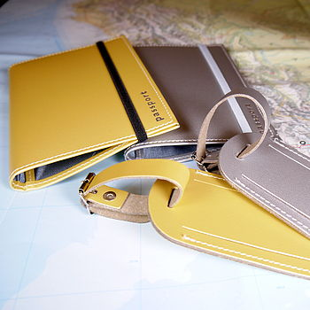 Metallic Passport Case And Luggage Tag