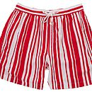 Mens Deckchair Swimshorts