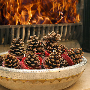 Ten Scented Pinecone Fire Lighters - living room