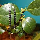 Hematite Drop Earrings By INSPIRE ROCKS