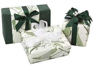 Mistletoe Gift Wrap Set - cards & wrap