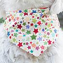 Christmas Stars/Red Spot Dog Bandana