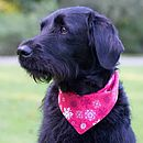 Christmas Snowflake/Gingham Dog Bandana