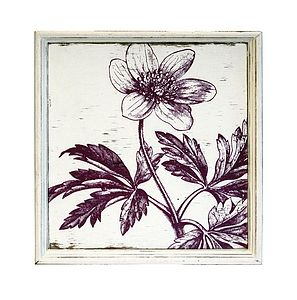 Fancy Flora Wall Art