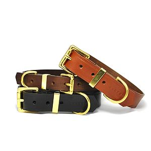 Classic Leather Dog Collar - walking