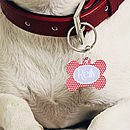Personalised Pet ID Tag Bone Shape Polka Dot